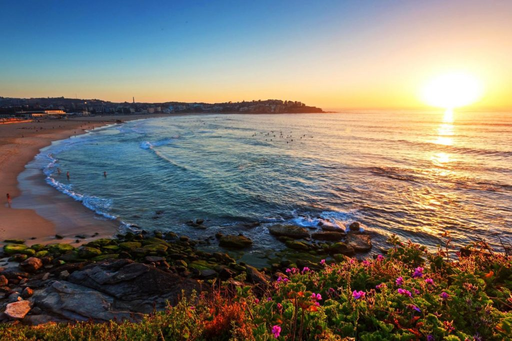 Bondi beach at sunrise
