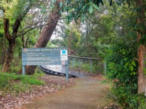 Lane Cove National Park camping spots