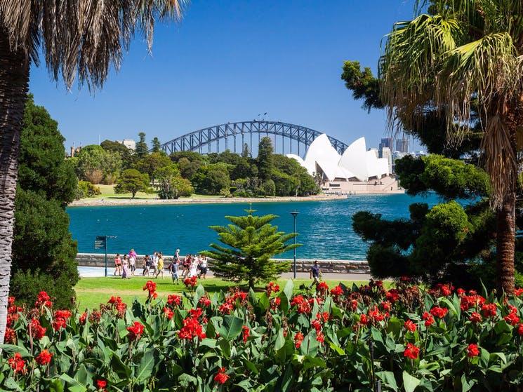 Royal Botanic Gardens Sydney Park