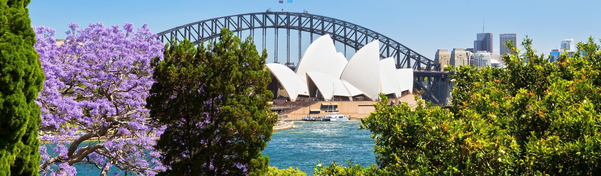 Sydney spring