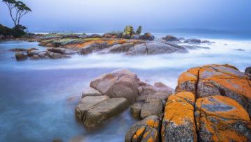 Tasmania Travel Guide: 8 Spots You Must Visit